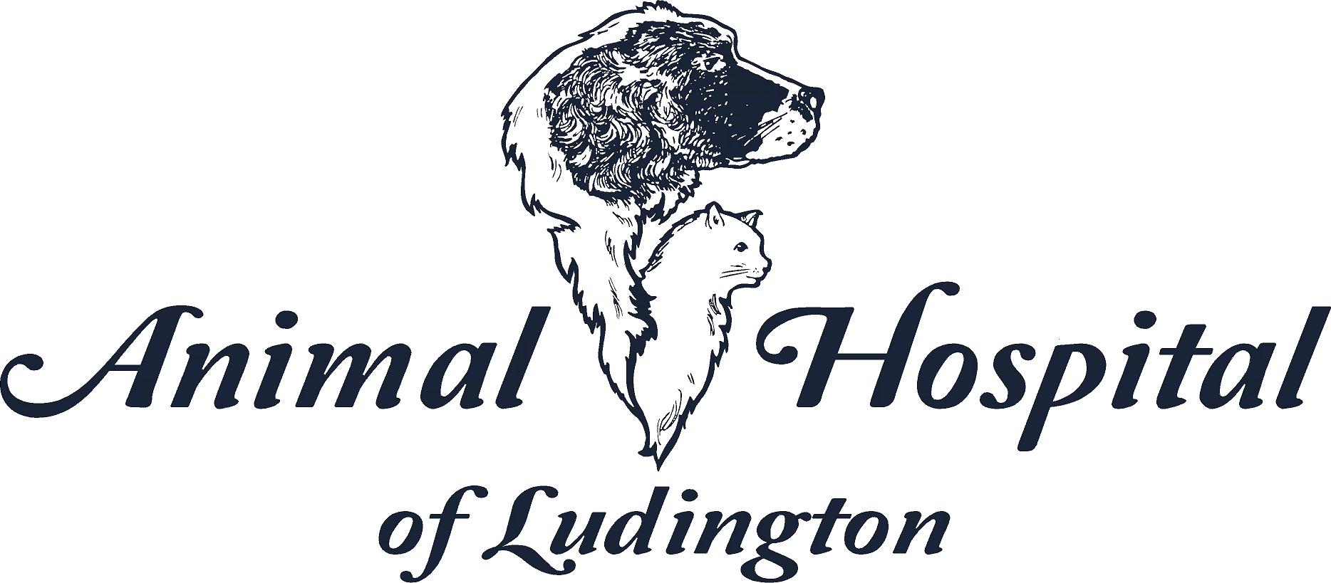 Animal Hospital of Ludington Home